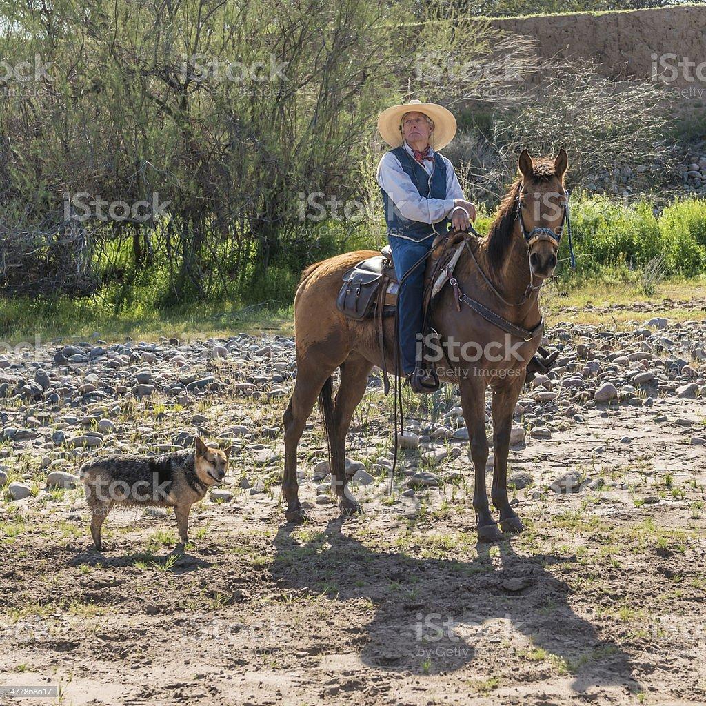 Senior cowboy sitting on horse royalty-free stock photo