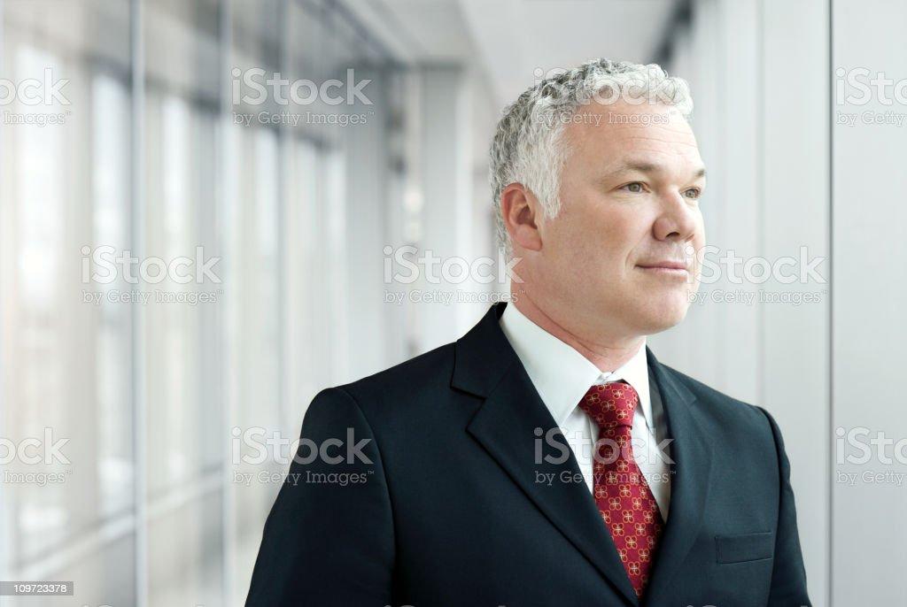 Senior Executive  Businessman royalty-free stock photo