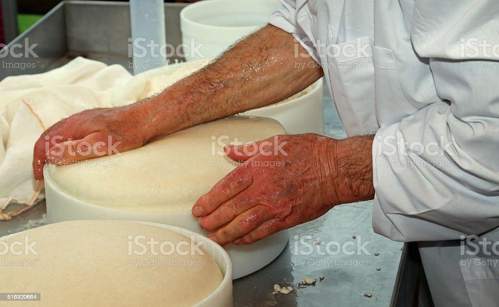 senior expert cheesemaker checks the wheel of cheese stock photo