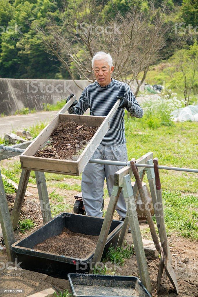 Senior farmer sifting soil stock photo