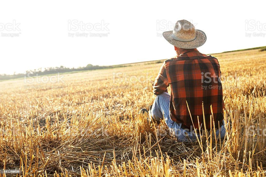 Senior farmer sitting on field stock photo