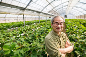 Senior farmer standing in his greenhouse