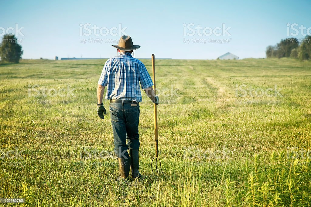 Senior Farmer Walking in his field rear view royalty-free stock photo