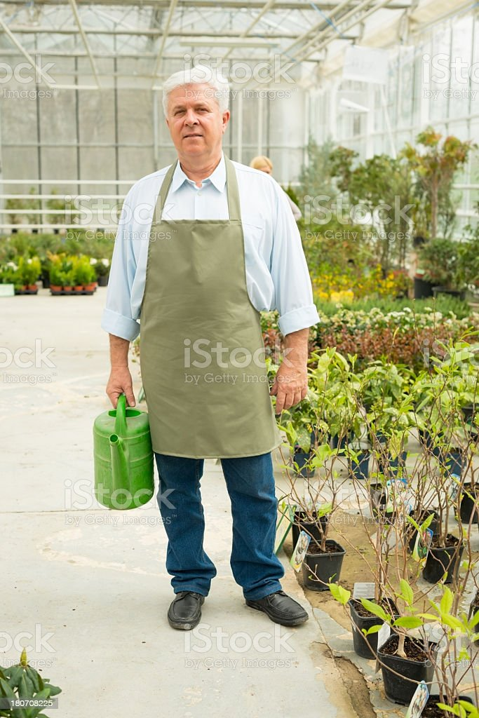 Senior florist standing in greenhouse royalty-free stock photo