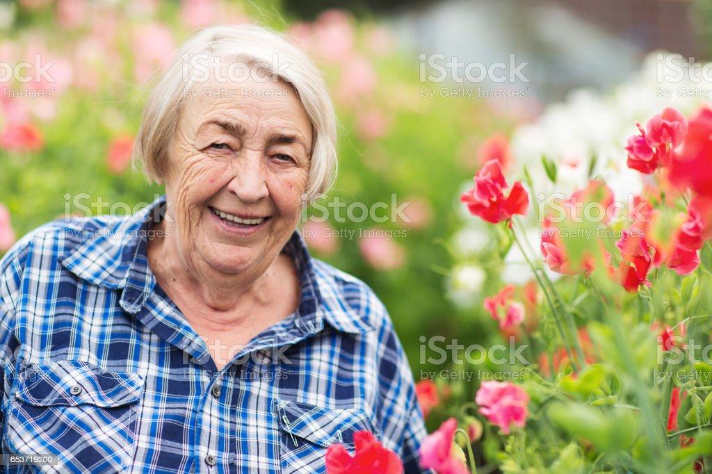 Senior flower grower stock photo