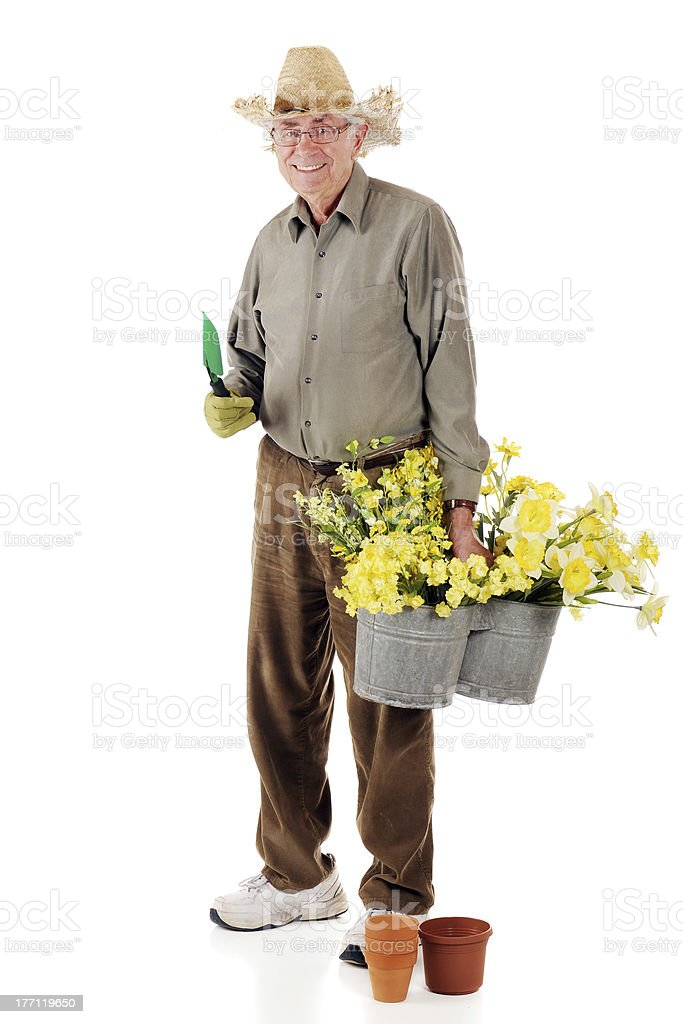 Senior Gardener stock photo