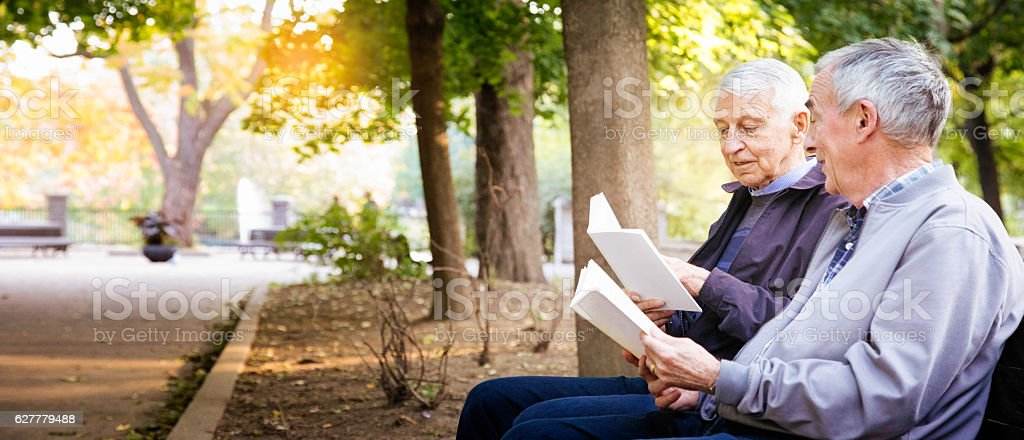 Senior gay male couple enjoying reading books in park panorama stock photo