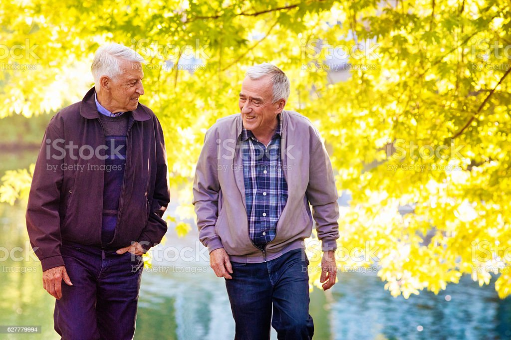 Senior gay male couple walking and laughing in park Autumn stock photo