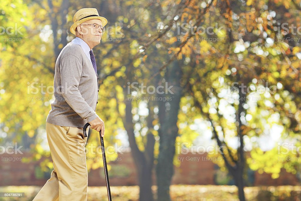 Senior gentleman walking with a cane in park stock photo