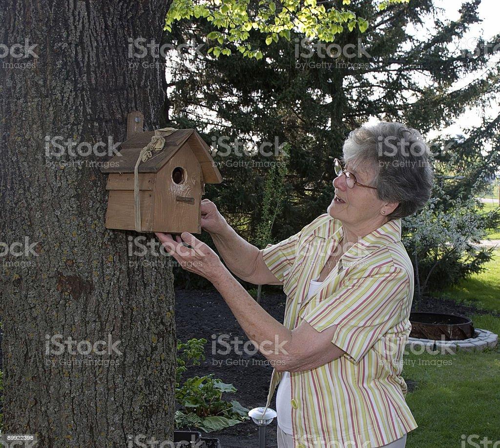 Senior hanging bird house stock photo
