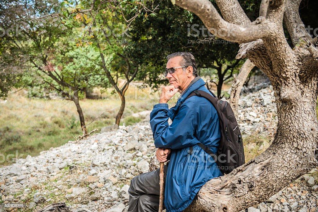 Senior Hiker Having Rest on Tree Trunk, Brac Island, Croatia stock photo