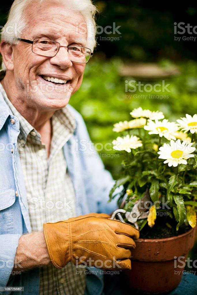 Senior in Garden stock photo