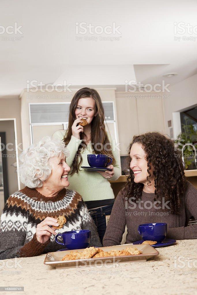 Senior lady at home royalty-free stock photo