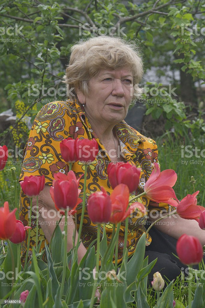 Senior lady with the tulips royalty-free stock photo