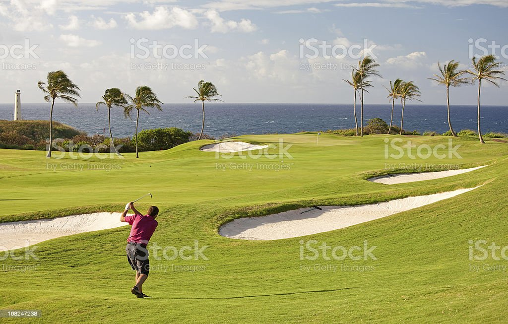 Senior Male Golfer on Tropical Golf Course in Hawaii stock photo