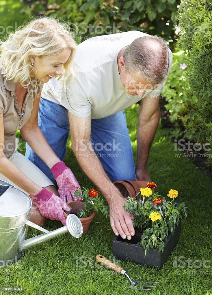 Senior man assisting woman in her garden royalty-free stock photo