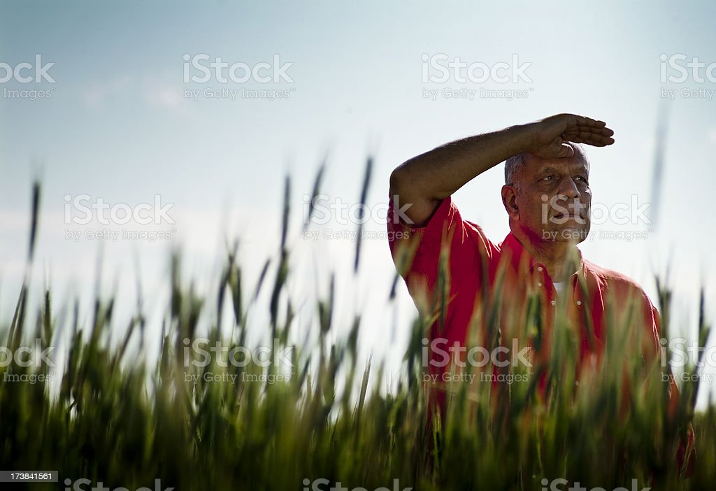A senior man blocking the sun in a field of tall grass royalty-free stock photo