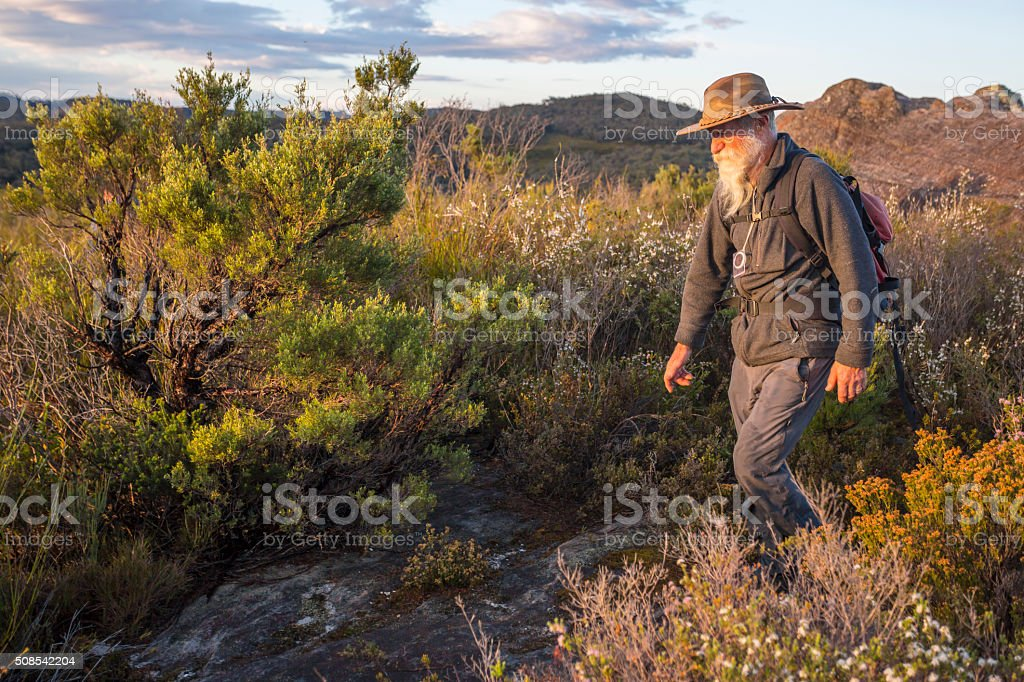 Senior Man Bushwalking in Spectacular Blue Mountains Australian Landscape stock photo