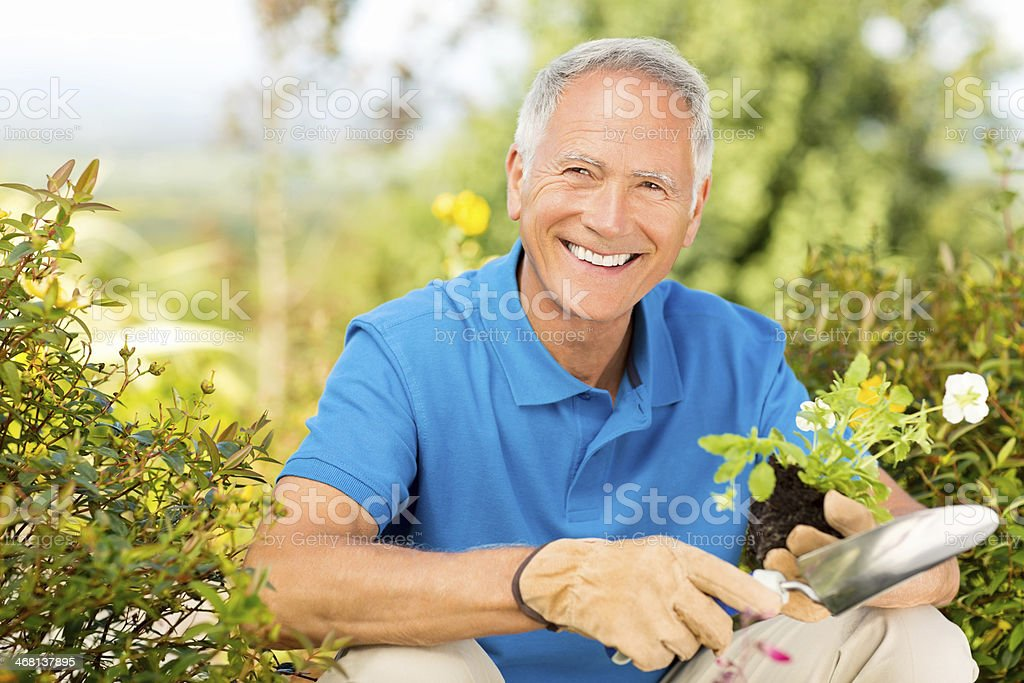 Senior Man Holding A Trowel And Sapling In Garden. royalty-free stock photo