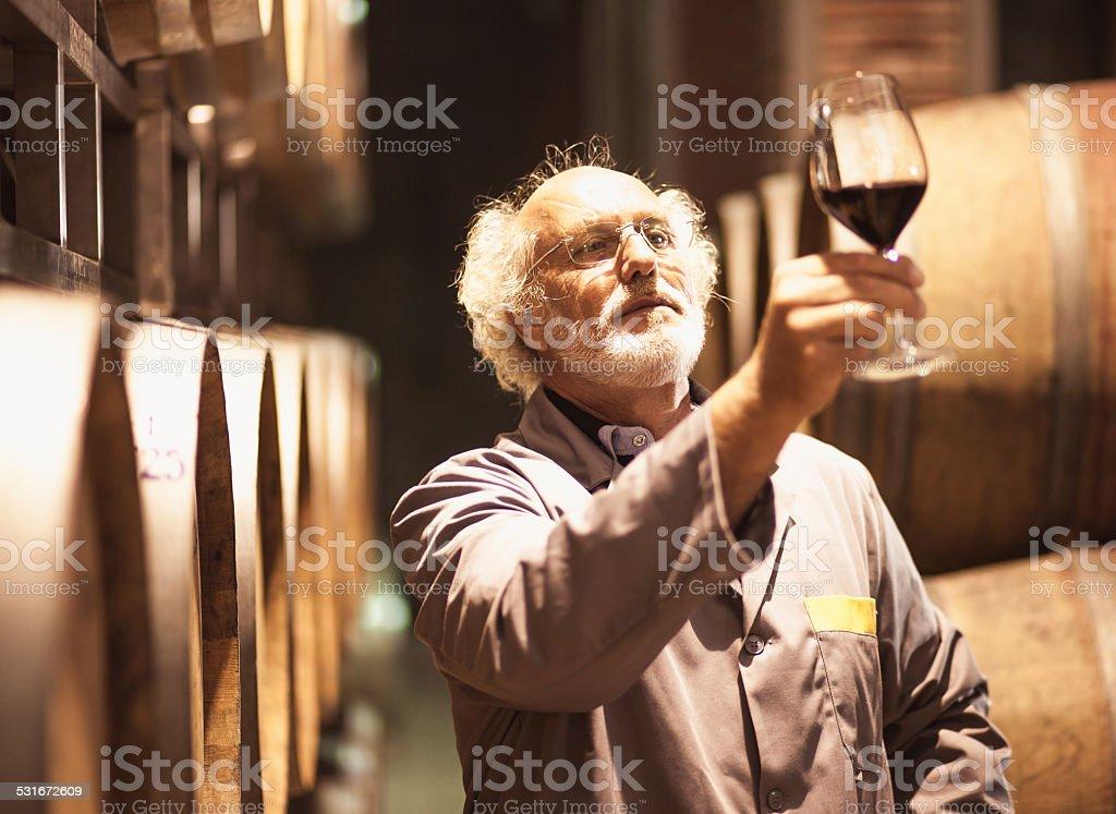 Senior man in wine cellar stock photo