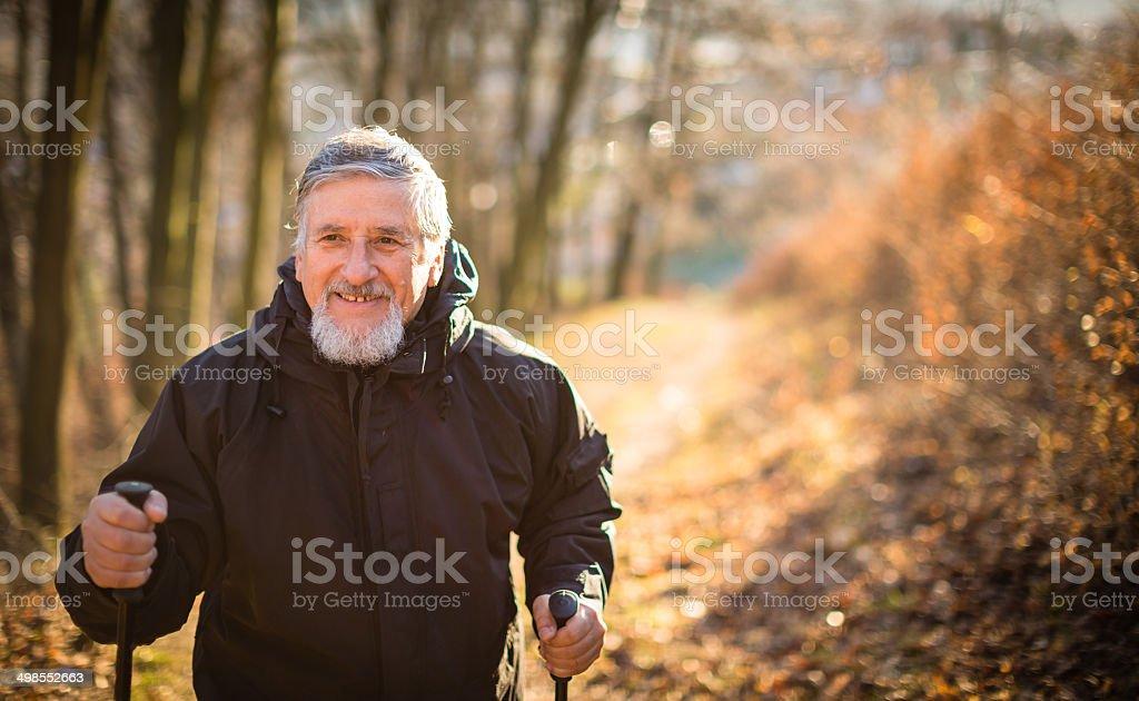 Senior man nordic walking royalty-free stock photo