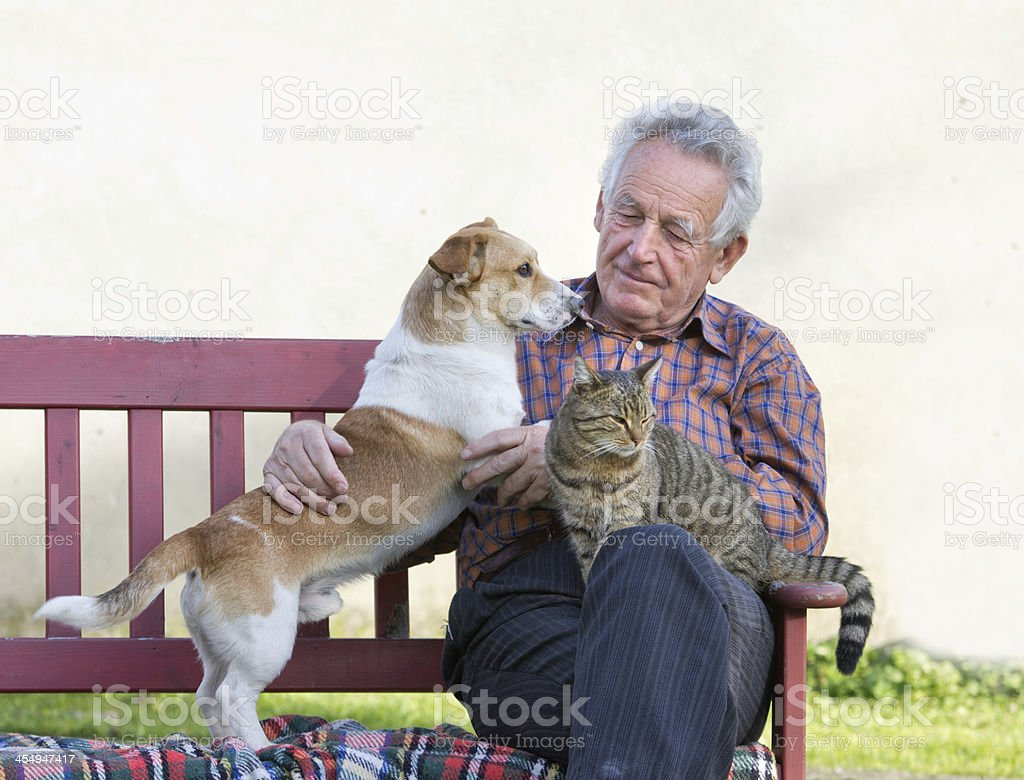 A senior man on a park bench with his dog and cat stock photo