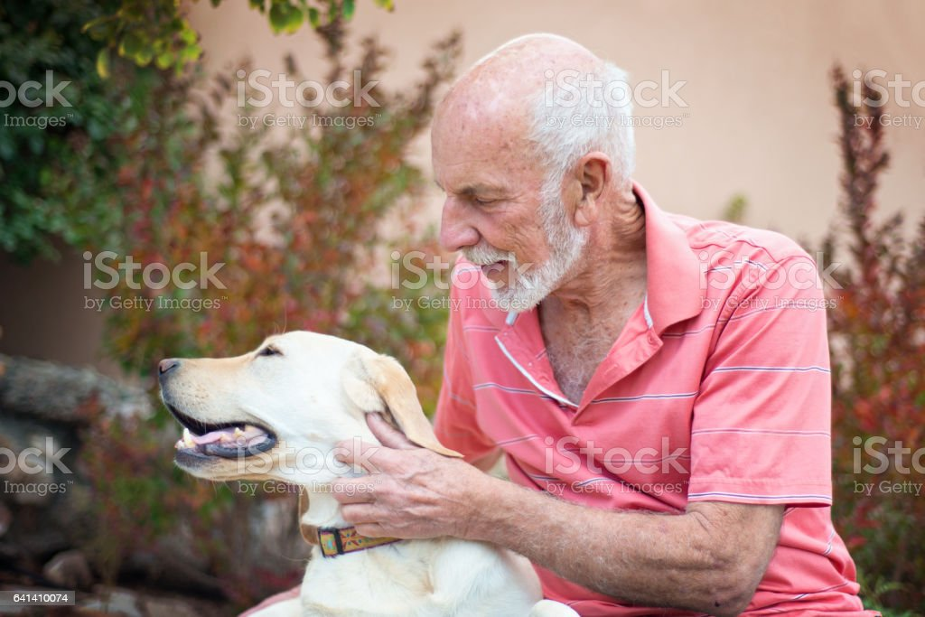 Senior man petting dog outdoors stock photo