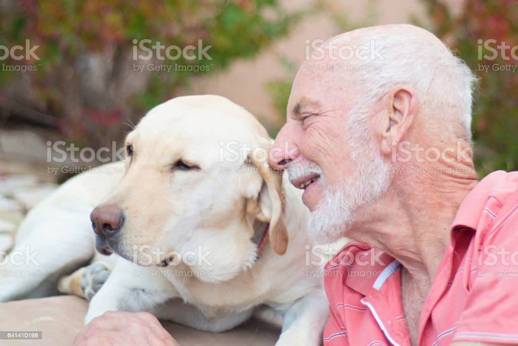 Senior man petting dog outdoors stock photo