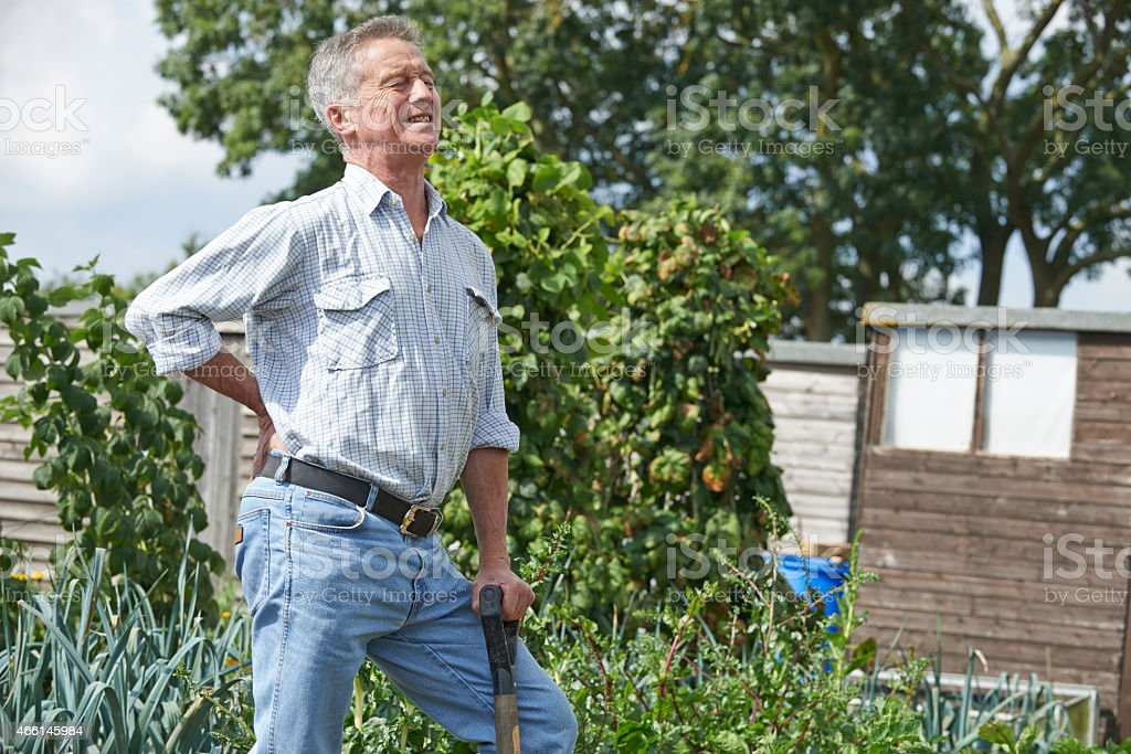 Senior man standing in the garden, suffering from back pain stock photo