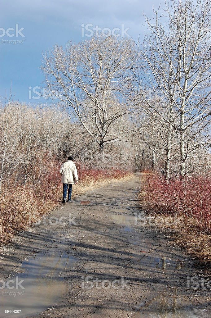 Senior man walking in the park royalty-free stock photo