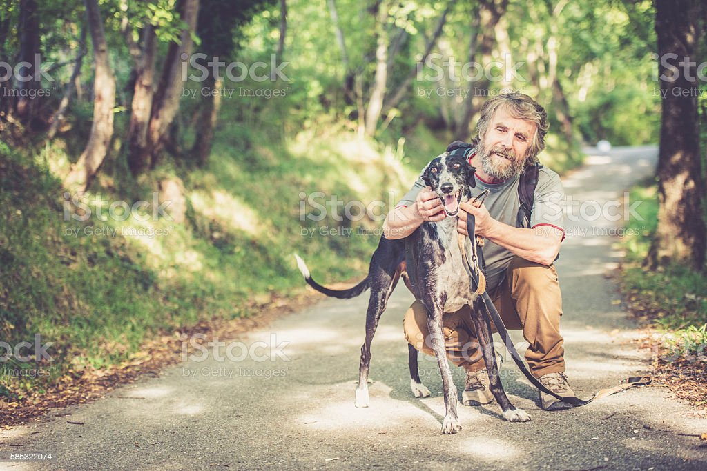 Senior man with beard - Mountaineer and his greyhound dog stock photo