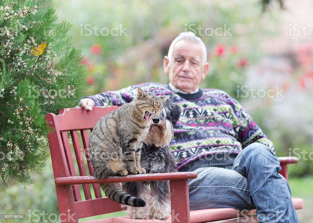 Senior man with cat and dog stock photo