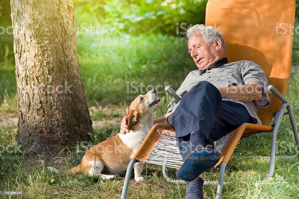 Senior man with dog stock photo