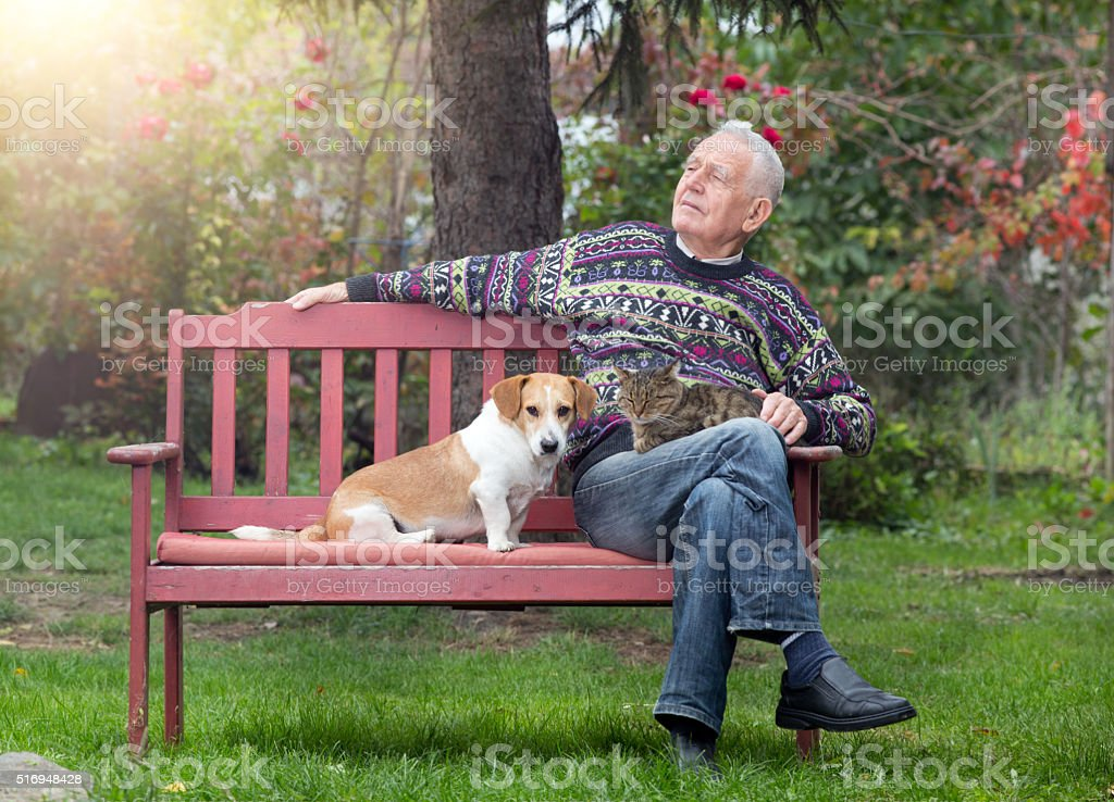 Senior man with dogs and cat stock photo