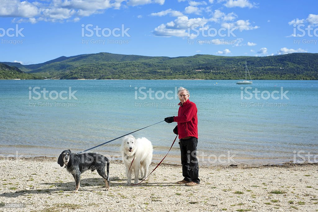 Senior man with dogs on holiday, France stock photo