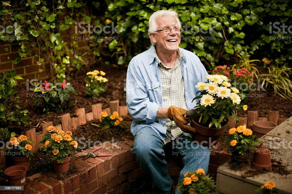 Senior Man with Flowers in Garden stock photo