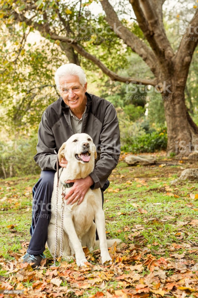 Senior man with his dog in park stock photo