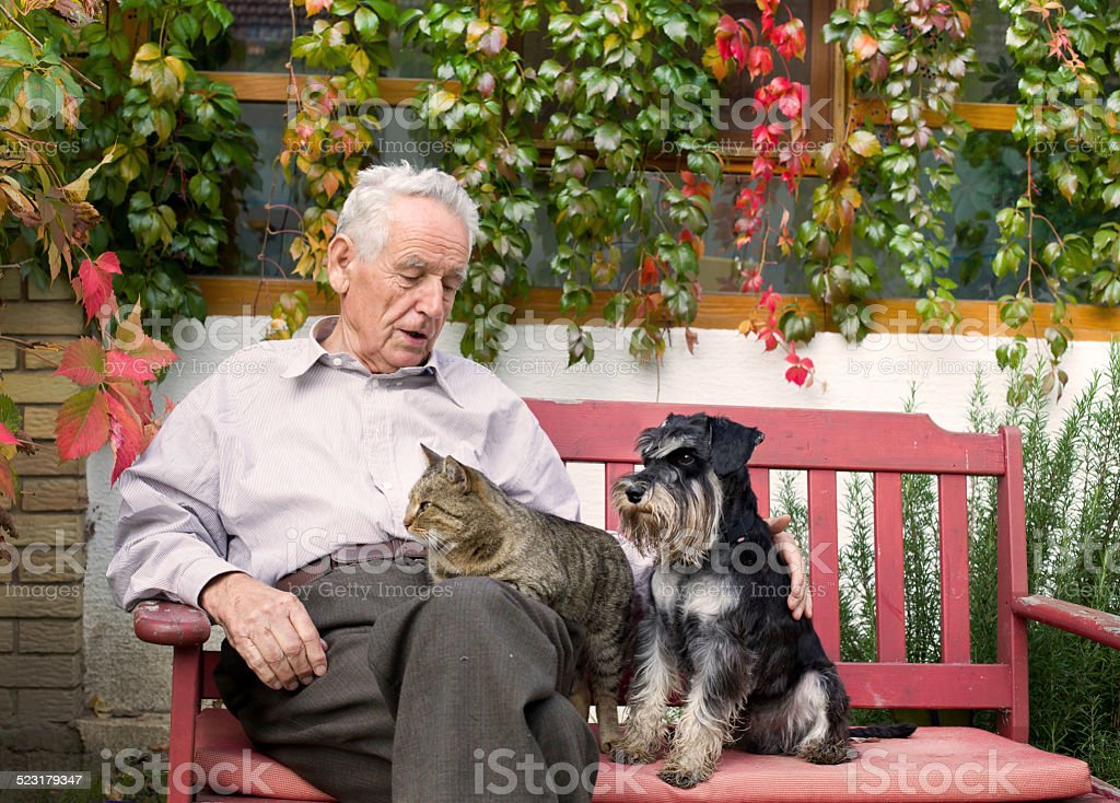 Senior man with pets stock photo