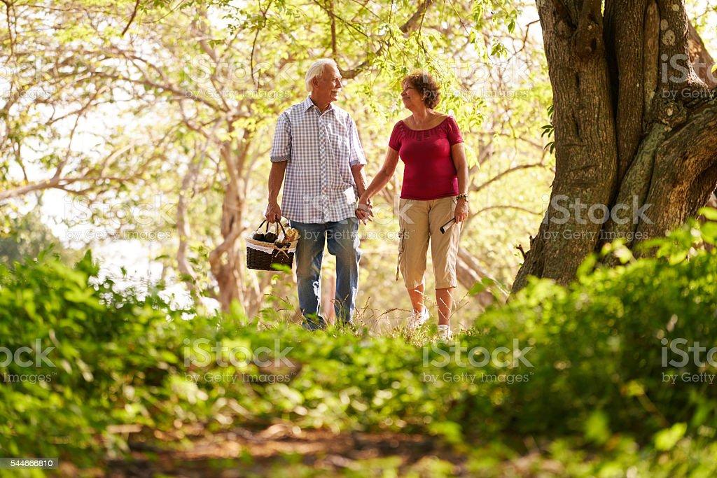 Senior Man Woman Old Couple Doing Picnic stock photo