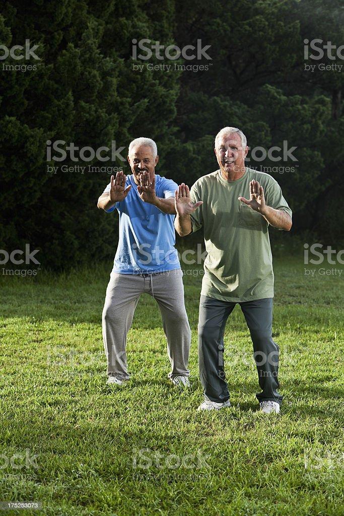 Senior men practicing tai chi stock photo