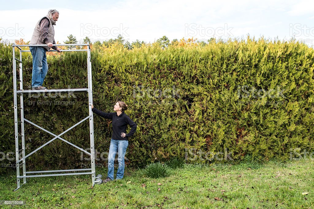 Senior on scaffolding with daughter below stock photo