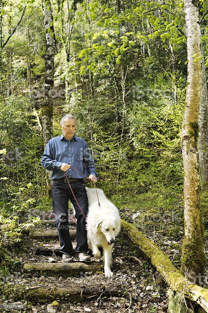 Senior owner walking dog in forest royalty-free stock photo