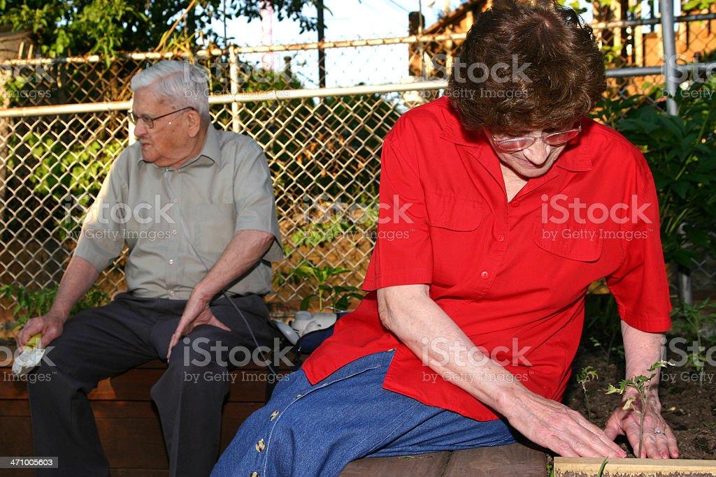 Senior Series: Gardening royalty-free stock photo