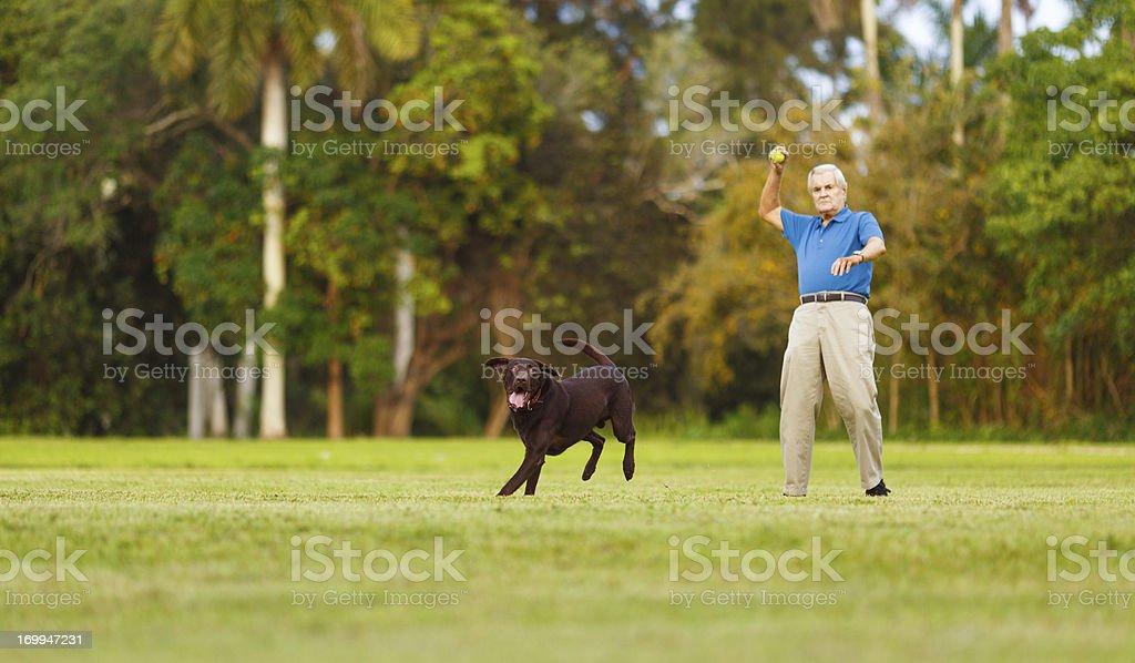 senior with dog stock photo