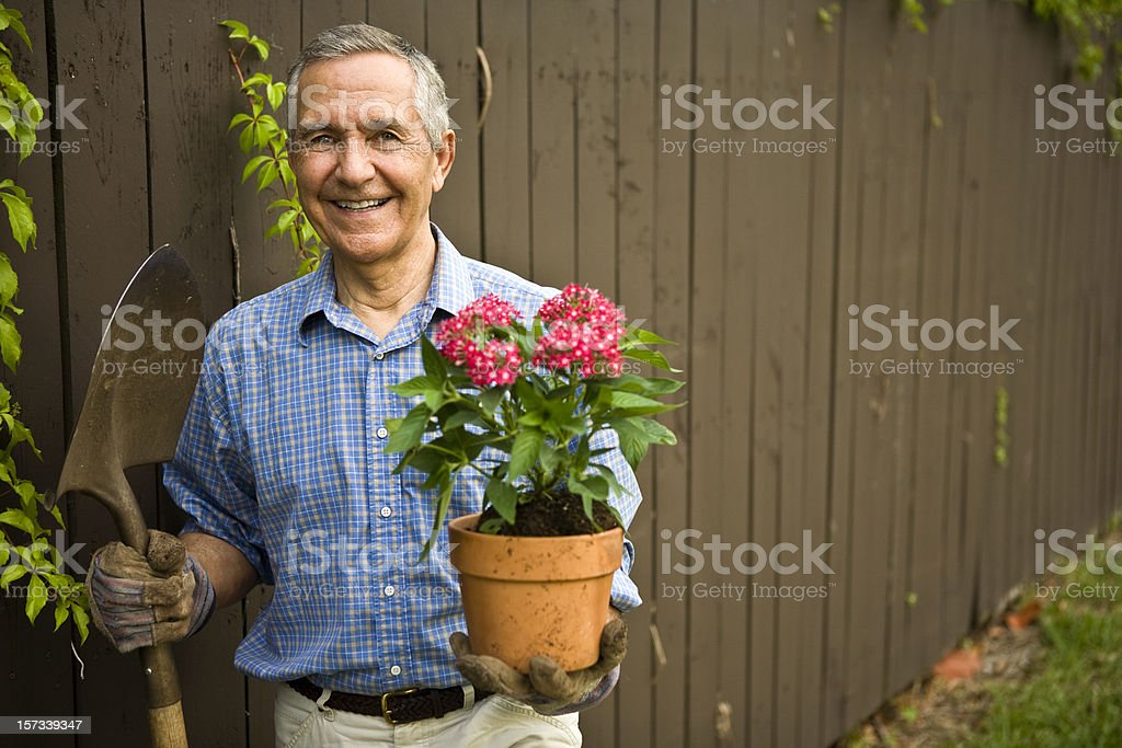 Senior with Shovel and Flowers royalty-free stock photo