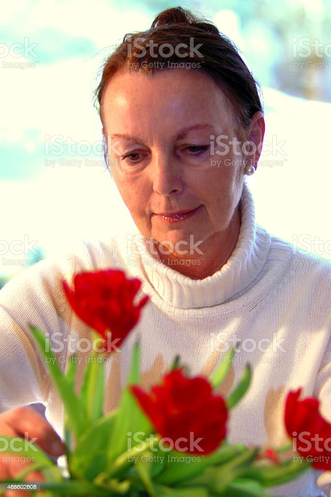 senior with tulips stock photo