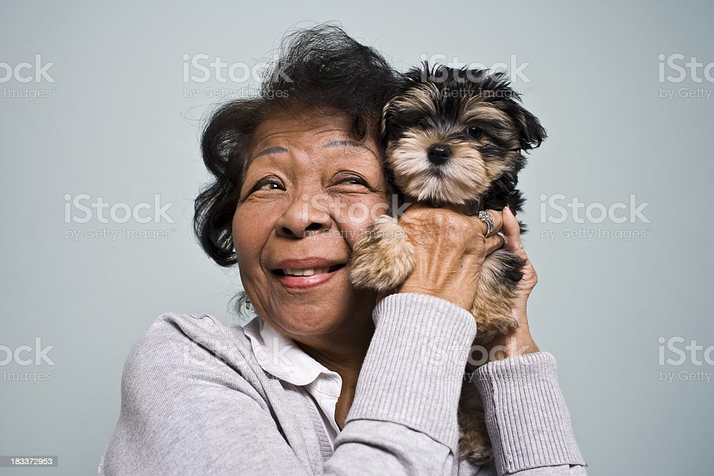 Senior Woman and a Puppy stock photo