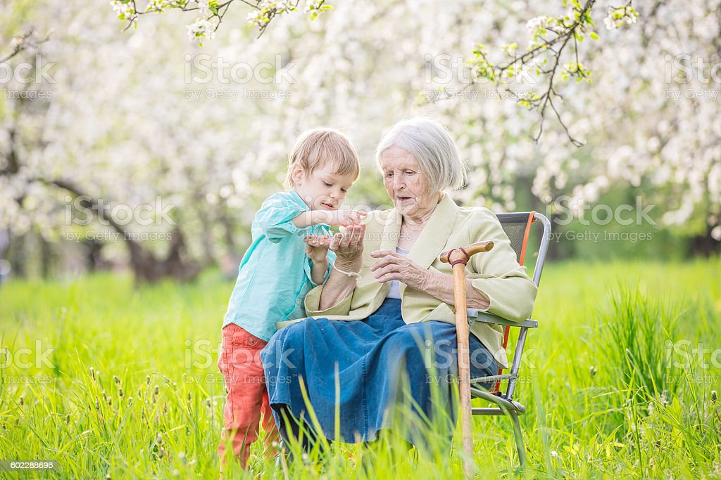 Senior woman and her great grandson in blossoming orchard stock photo