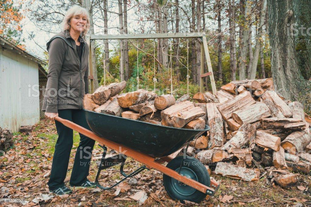 Senior woman carrying firewood with wheelbarrow in autumn stock photo