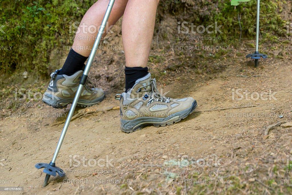 Senior Woman Hiking Poles Vasque Boots on Forest Trail Oregon stock photo